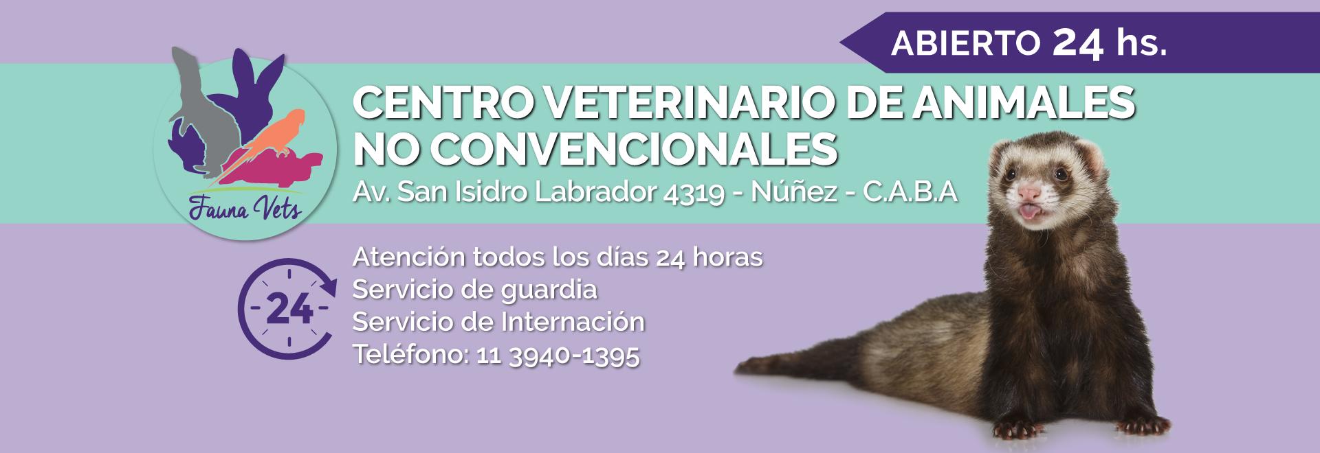 Fauna Vets - Veterinarios - hurones - erizos - camila lascano - fernando pedrosa - nicolas cohen